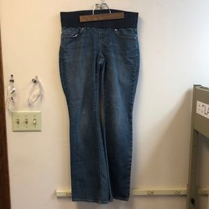 GAP Sexy Boot Maternity Jeans - 8R